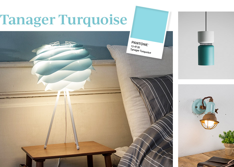 Tanager Turquoise